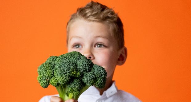 ebook verdure
