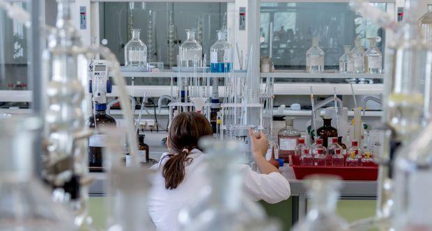 10 ricercatrici dell'Università di Torino ricevono il prestigioso grant della Fondazione Veronesi